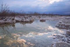 Bezinning van de hemel, de wolken en de bomen in het water van het Dode Overzees tussen zoute vormingen bij zonsopgang stock foto