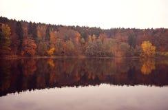 Bezinning van de herfstbos in het water Stock Foto's