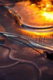 Bezinning van de Zon op het ijs. Royalty-vrije Stock Foto