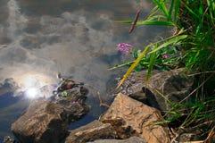 Bezinning van de zon op het water dichtbij de kust stock afbeeldingen
