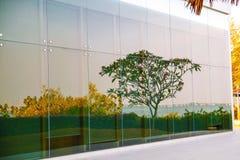 Bezinning van een mooi natuurlijk landschap op een groot venster stock afbeelding