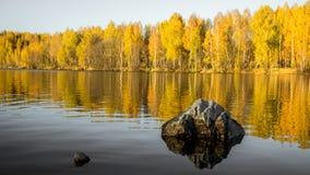 Bezinning van het de herfst de bosmeer Meer in Mooi de herfstbos Royalty-vrije Stock Foto