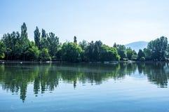 Bezinning van het groene park in het meer Stock Foto's