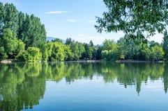 Bezinning van het groene park in het meer Royalty-vrije Stock Afbeelding