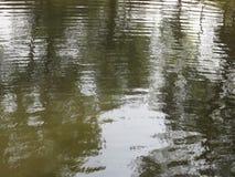 Bezinning van van bomen op gegolfte waterspiegelachtergrond die worden weerspiegeld Royalty-vrije Stock Foto's