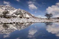 Bezinning van verse sneeuw in Onderstel Cook National Park Royalty-vrije Stock Foto