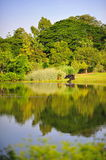 Bezinningen bij Botanische Tuinen Royalty-vrije Stock Foto's