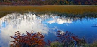 Bezinningen in het water van wolken en Patagonian de herfstkleuren Laguna Capri en zet Fitz Roy omvat door wolken, Argentinië op royalty-vrije stock foto