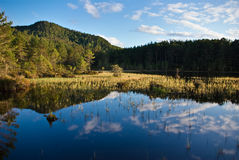 Bezinningen in Loch Royalty-vrije Stock Fotografie