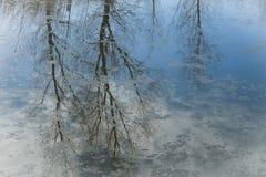 Bezinningen over een ijzig kanaal stock afbeeldingen