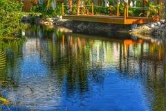 Bezinningen over het water royalty-vrije stock fotografie