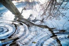 Bezinningen over het water Stock Foto