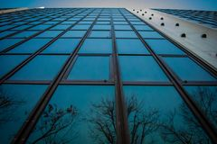 Bezinningen van bomen op een weerspiegelend gebouw bij schemer Stock Fotografie