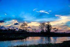 Bezinningen van zonsondergangsilhouet in het cipresmoeras stock fotografie