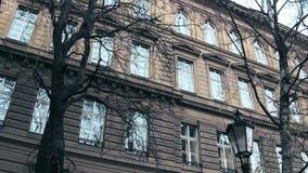 Bezlistni drzewa przeciw klasycznemu europejskiemu budynkowi, niskiego kąta strzał zdjęcie stock