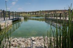 Bezoek aan Hiriya (Ariel Sharon-park) Royalty-vrije Stock Fotografie