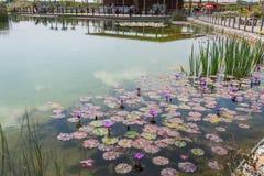 Bezoek aan Hiriya (Ariel Sharon-park) Stock Foto's