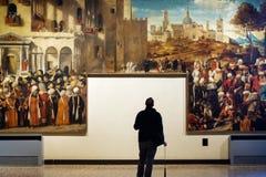 Bezoeker in een museum stock fotografie