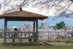 Bezoeker in Iwate-park (van de het kasteelplaats van Morioka het park) Stock Foto