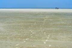 Bezoekers die over mudflats lopen stock fotografie