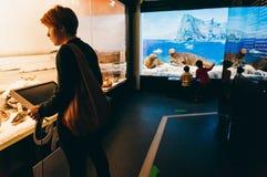 Bezoekers in Grigore Antipa Natural History Museum in Boekarest, Roemenië Stock Afbeeldingen