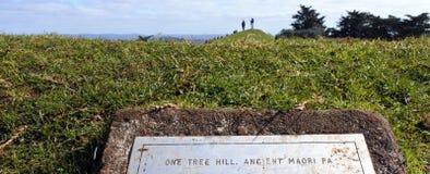 Bezoekers in Één Boomheuvel in Auckland Nieuw Zeeland Stock Afbeeldingen
