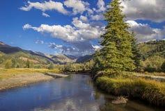 Bezpłatny Bieżący San Miguel Rzeczny Pobliski Telluride, Kolorado zdjęcie royalty free