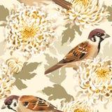 Bezszwowa chryzantema i ptaki Zdjęcia Royalty Free