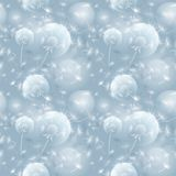 Bezszwowa deseniowa ilustracja z dandelion blowball Fotografia Royalty Free