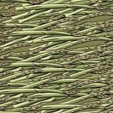 Bezszwowa deseniowa ręka rysujący asparagus Fotografia Royalty Free