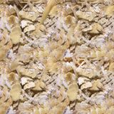 Bezszwowa fotografii tekstura owsów płatki fotografia royalty free
