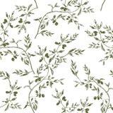 Bezszwowa gałązka oliwna wzoru ręka rysująca ilustracji