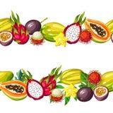 Bezszwowa granica z egzotycznymi tropikalnymi owoc Ilustracja azjatykcie rośliny ilustracji