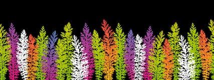 Bezszwowa granica z kolor trawą Zdjęcie Stock