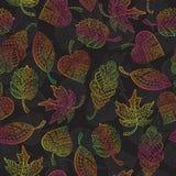 Bezszwowa ilustracja z jesień liśćmi Zdjęcie Stock