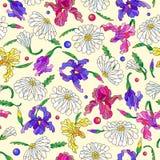 Bezszwowa ilustracja z kwiatami i liśćmi stokrotki i irysy na lekkim tle Fotografia Royalty Free
