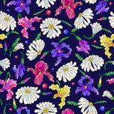 Bezszwowa ilustracja z kwiatami i liśćmi stokrotki i irysy na zmroku - błękitny tło Zdjęcie Royalty Free