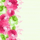 Bezszwowa kwiecista granica z różowymi różami Zdjęcia Stock