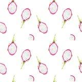 Bezszwowa ręka rysujący pięknej akwareli tropikalny wzór z dragonfruit plasterkami ilustracji