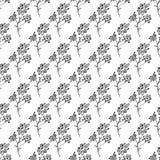 Bezszwowa ręka rysujący wzór abstrakcjonistyczni stokrotka kwiaty odizolowywający na białym tle kwiecisty wektor ilustracyjny ?li royalty ilustracja