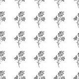 Bezszwowa ręka rysujący wzór abstrakcjonistyczni stokrotka kwiaty odizolowywający na białym tle kwiecisty wektor ilustracyjny ?li ilustracji