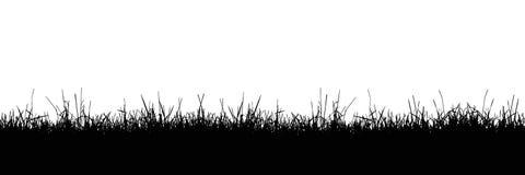 Bezszwowa realistyczna ilustracja trawa gazon lub badyl, odizolowywająca na białym tle, wektor ilustracja wektor
