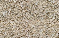 Bezszwowa szorstka ścienna tekstura Zdjęcie Royalty Free