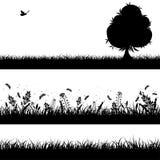 bezszwowa tło natura ilustracji