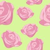 bezszwowa tło róża Zdjęcia Stock
