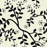 Bezszwowa tapeta kwiat i trzon dla Domowego Dekoruje tła Fotografia Stock