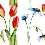 Bezszwowa tapeta z stokrotek i tulipanów kwiatami Obrazy Stock