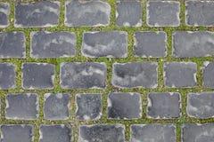 Bezszwowa tekstura brukowego kamienia ślad na zielonej trawie baku Azerbaijan w zimie stare miasto zdjęcia stock