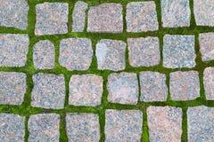 Bezszwowa tekstura brukowego kamienia ślad na zielonej trawie Może używać jako tło lub jako tekstura dla twój projekta Zdjęcie Royalty Free