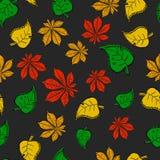 Bezszwowa tekstura drzewa barwioni liście Obraz Stock